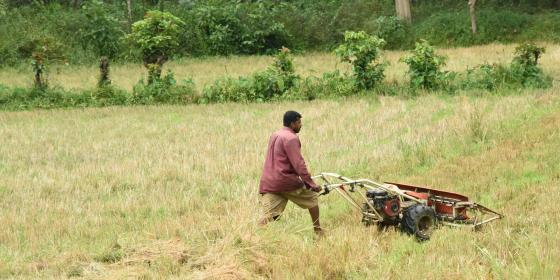 A farmer tending to his field